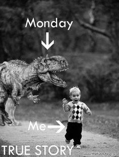 Monday true story
