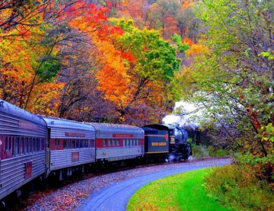 train fall leaves